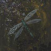 Dragonfly Dimension