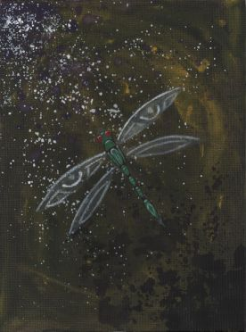 Dragonfly Dimension